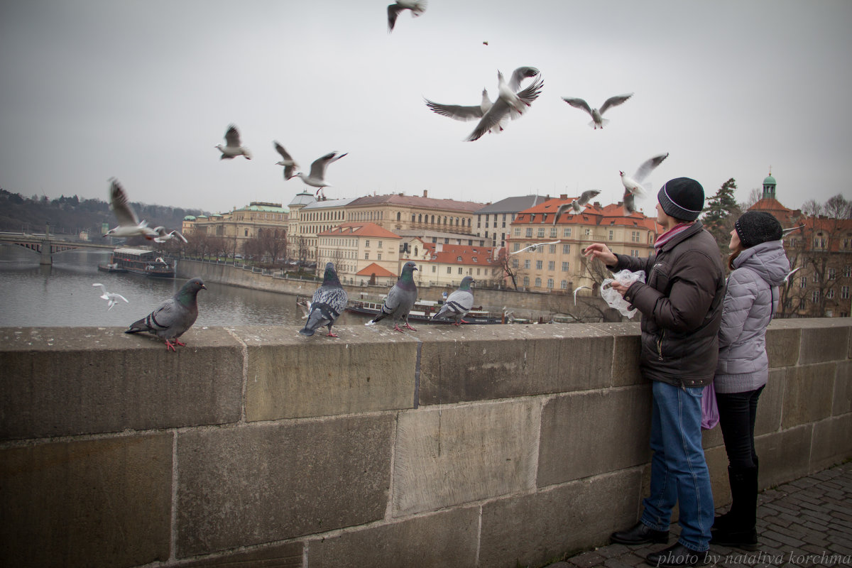 Карлов мост - nataliya korchma