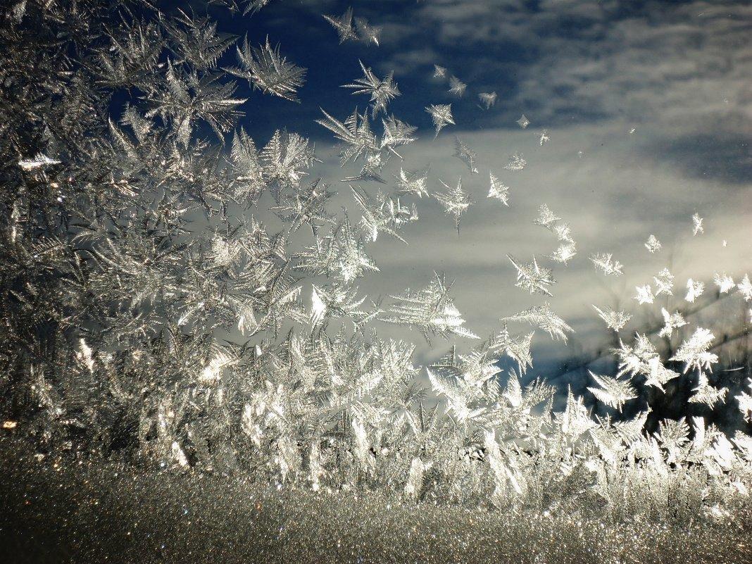 Рождественские узоры, автор фото моя мама)) - Марина Метелева