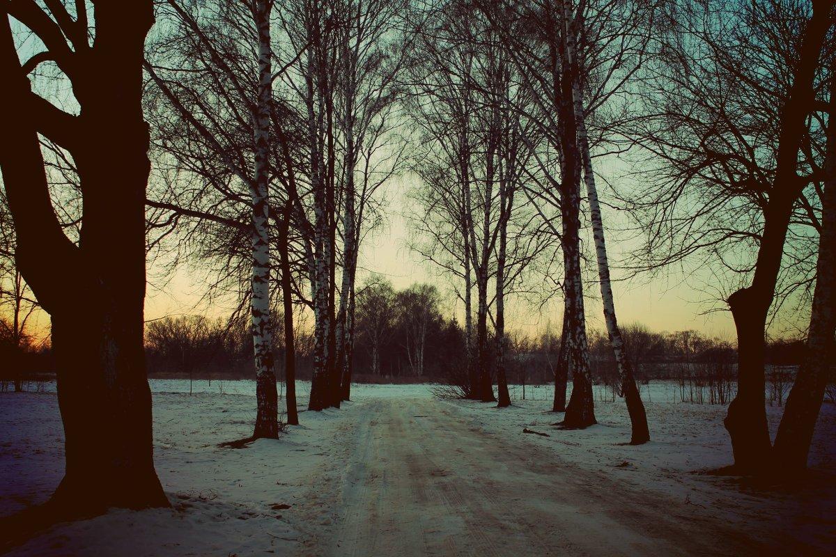 территория Брестской крепости - Катерина Лячок