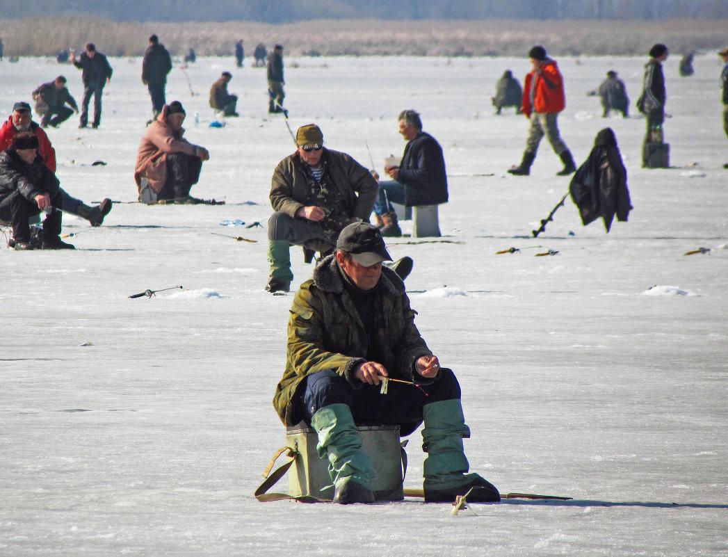 подледная рыбалка картинки