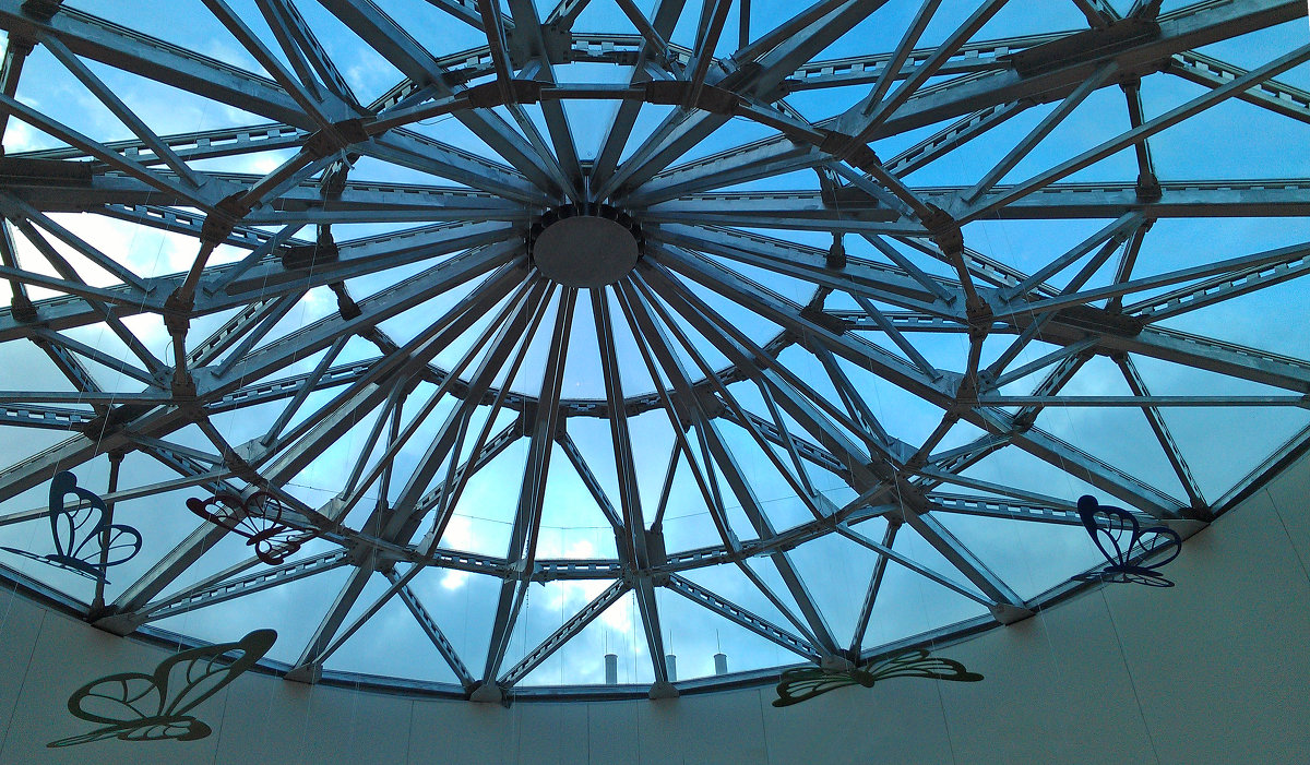 Крыша торгового центра - Евгения Латунская