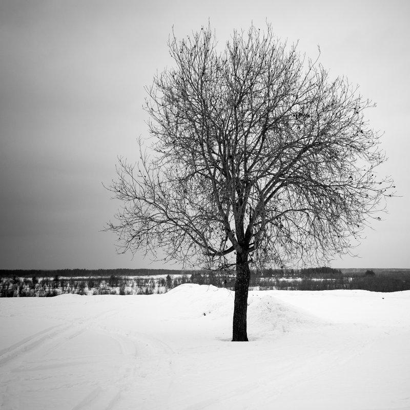 одиночество... - Андрей Белокопытов