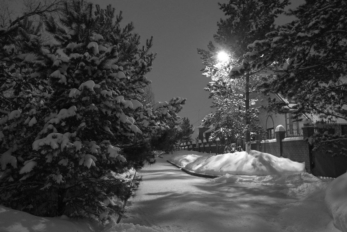Зимняя ночь - Igor Pavlyuk