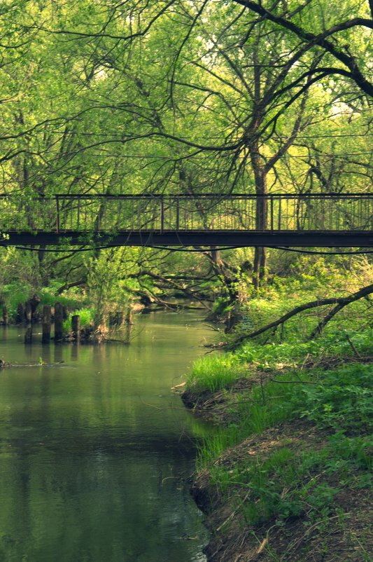 Река - Juliya Fokina