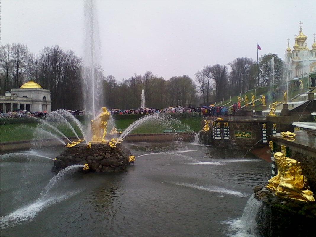 Петергоф, ежедневный запуск фонтанов - Екатерина Чернышова