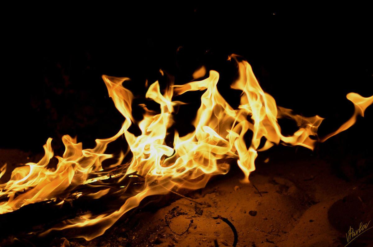 Танец пламени 12 - Виталий Павлов