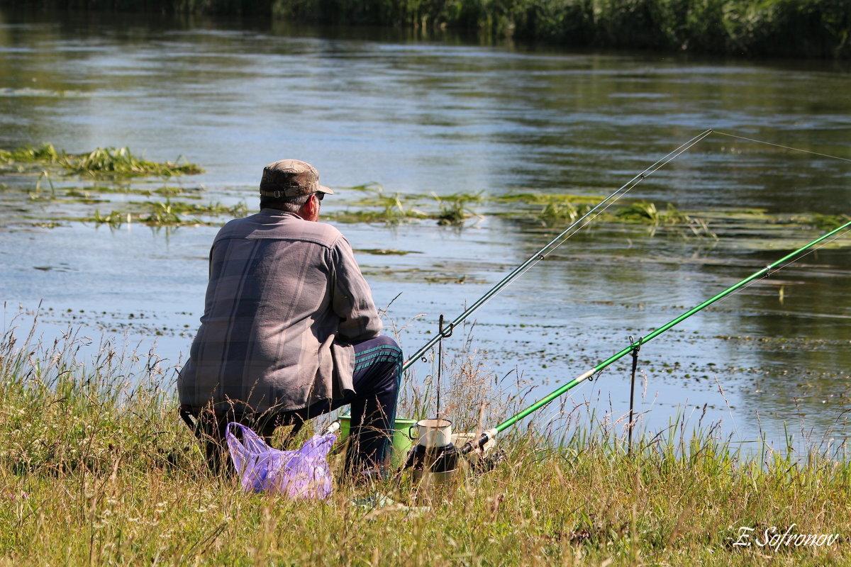 поехать на рыбалку ульяновск