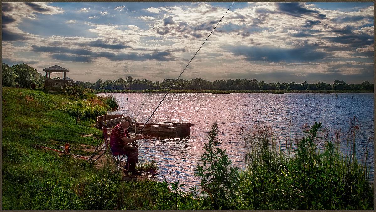платная рыбалка в муромском районе молотицы