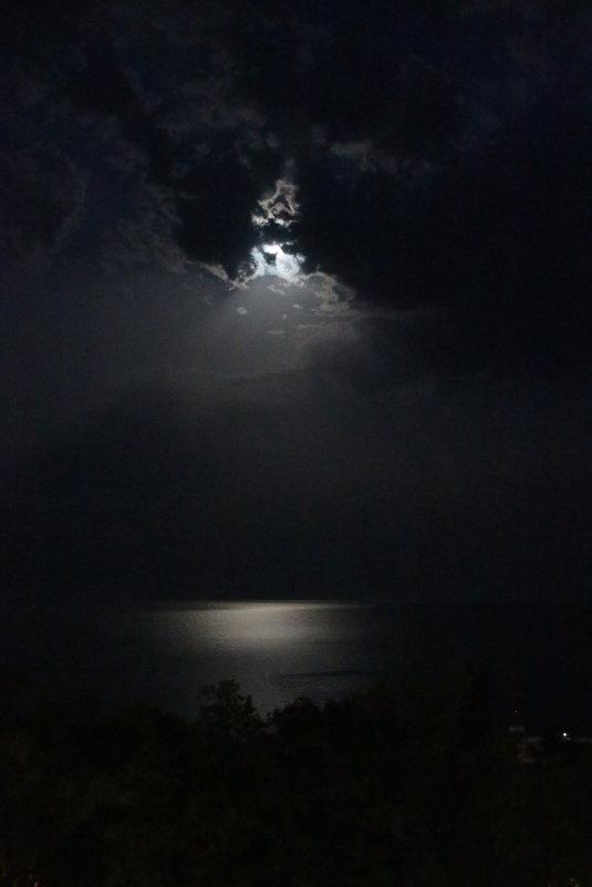 ночь на море - Маргарита Ма