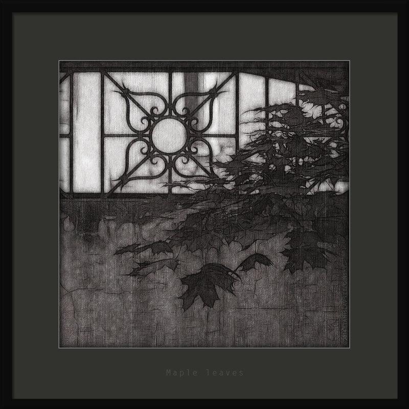 Кленовые листья - Станислав Лебединский
