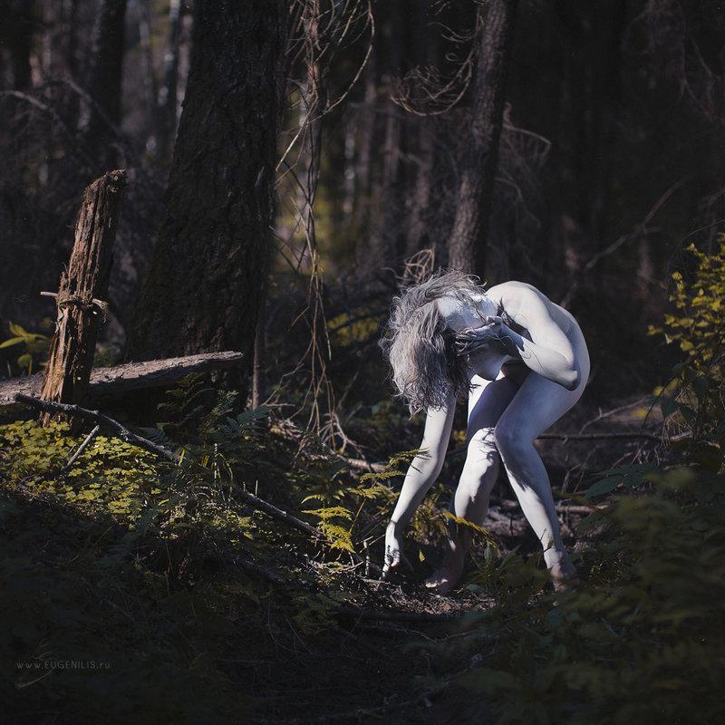 Кодама. Дух Леса. Часть вторая. - Eugeni Lis