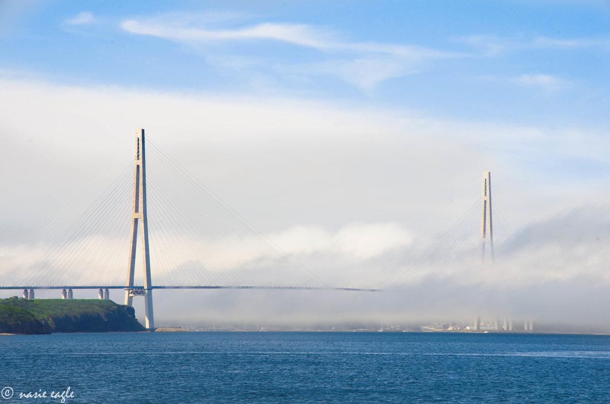 Мосты, между нами мосты - Анастасия Теличко