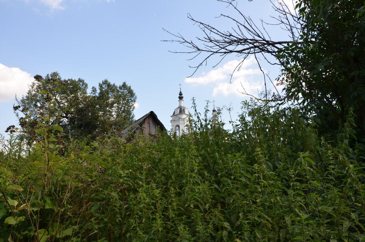 Сельский пейзаж. - Oleg4618 Шутченко