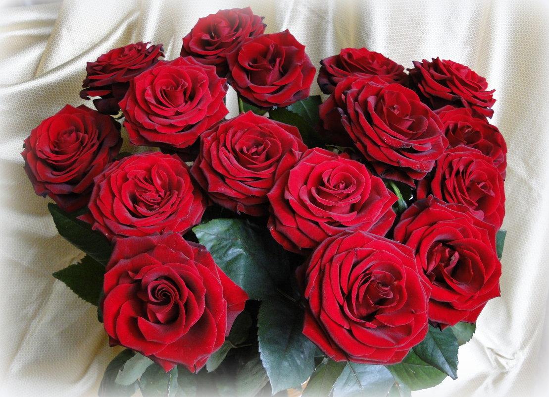 Букет из красных роз - Елена Шемякина
