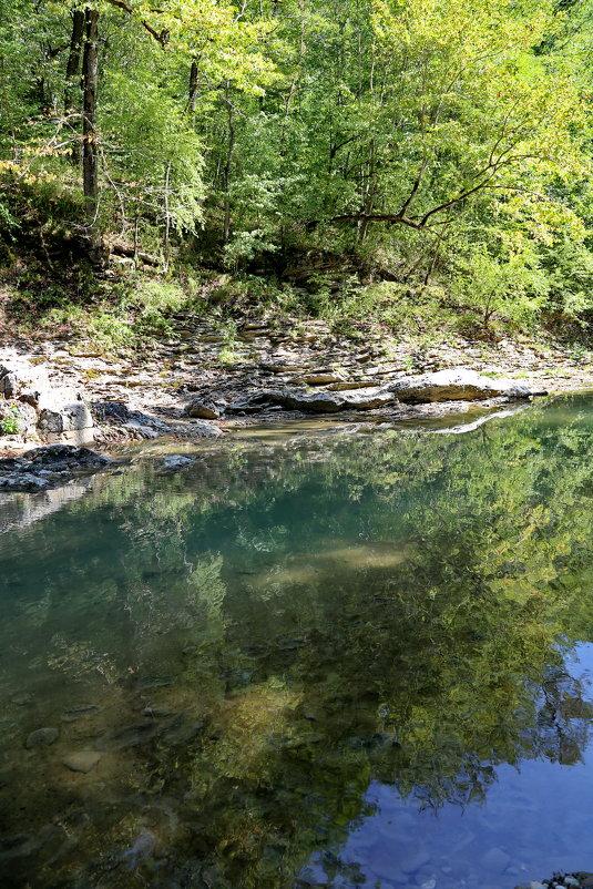 река Сахрай Кавказ - Нина Сигаева