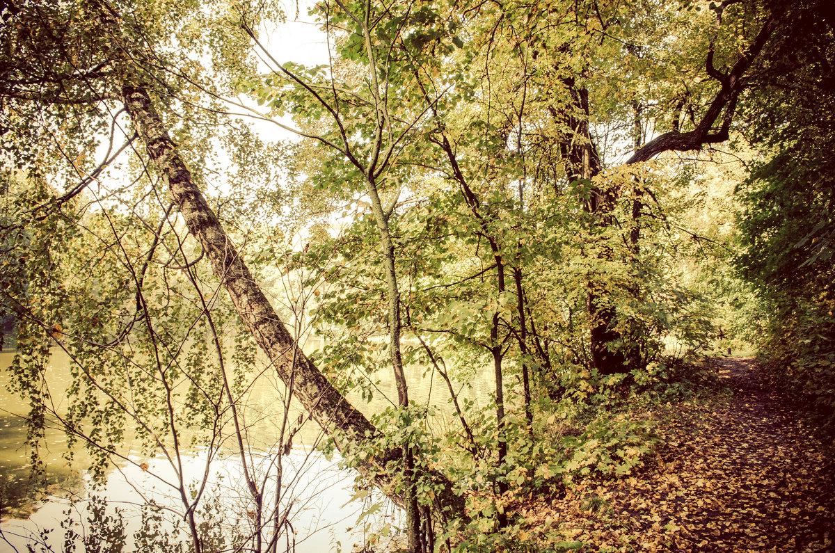 Осень - Кирилл Антропов
