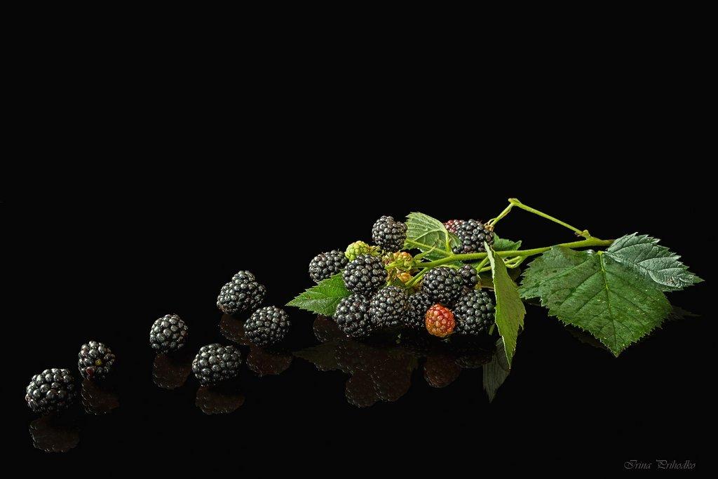 Контент Выбор фотохудожник ирина приходько белоруссия аромата нужно