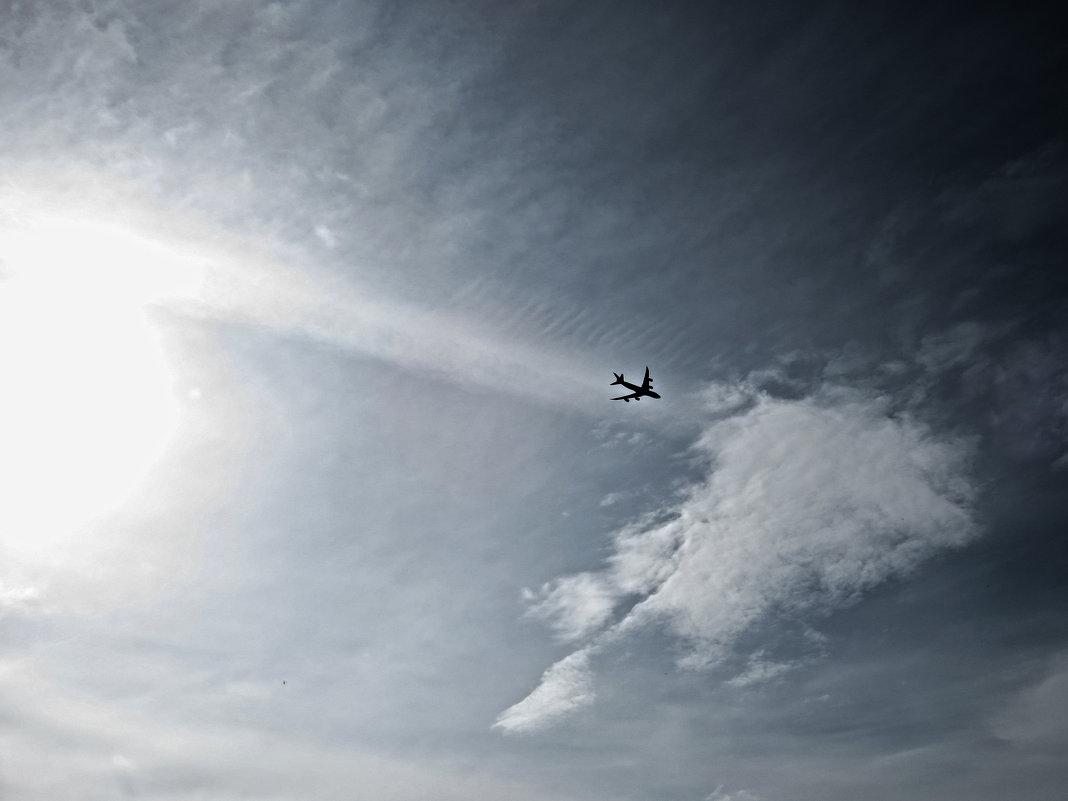 в небе над Новосибирском - Наталья Варламова