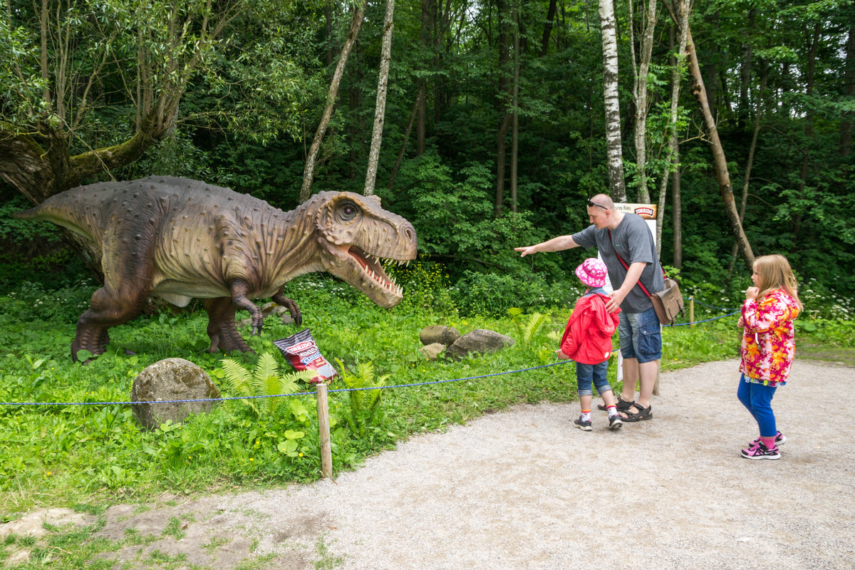 Парк для динозавров своими руками 66