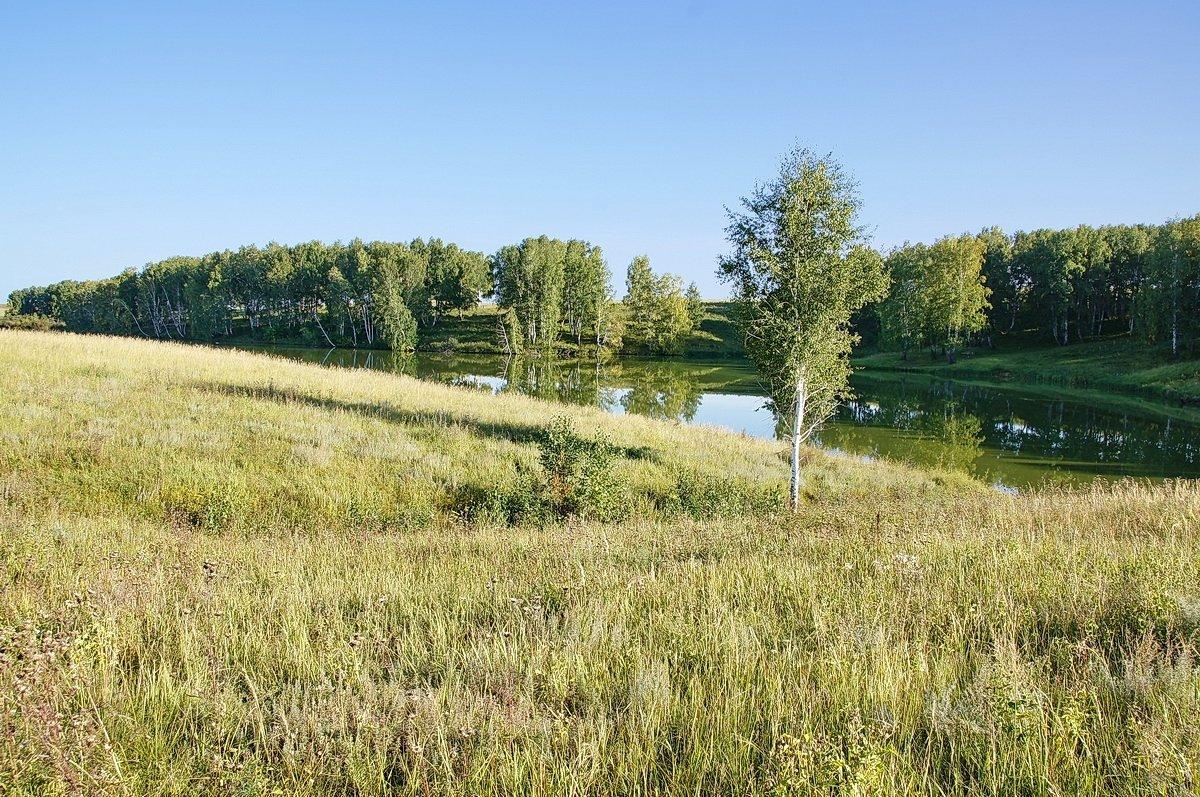Степное озерцо #2 - Виктор Четошников