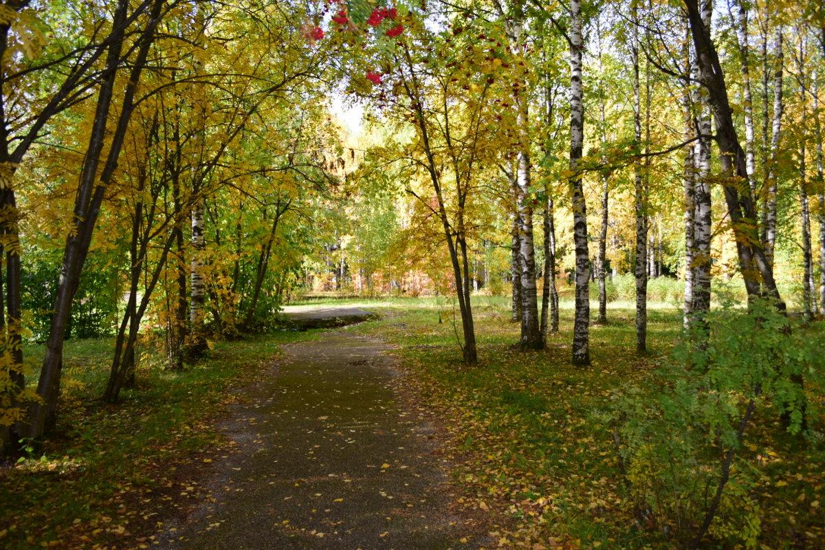 парк - Светлана