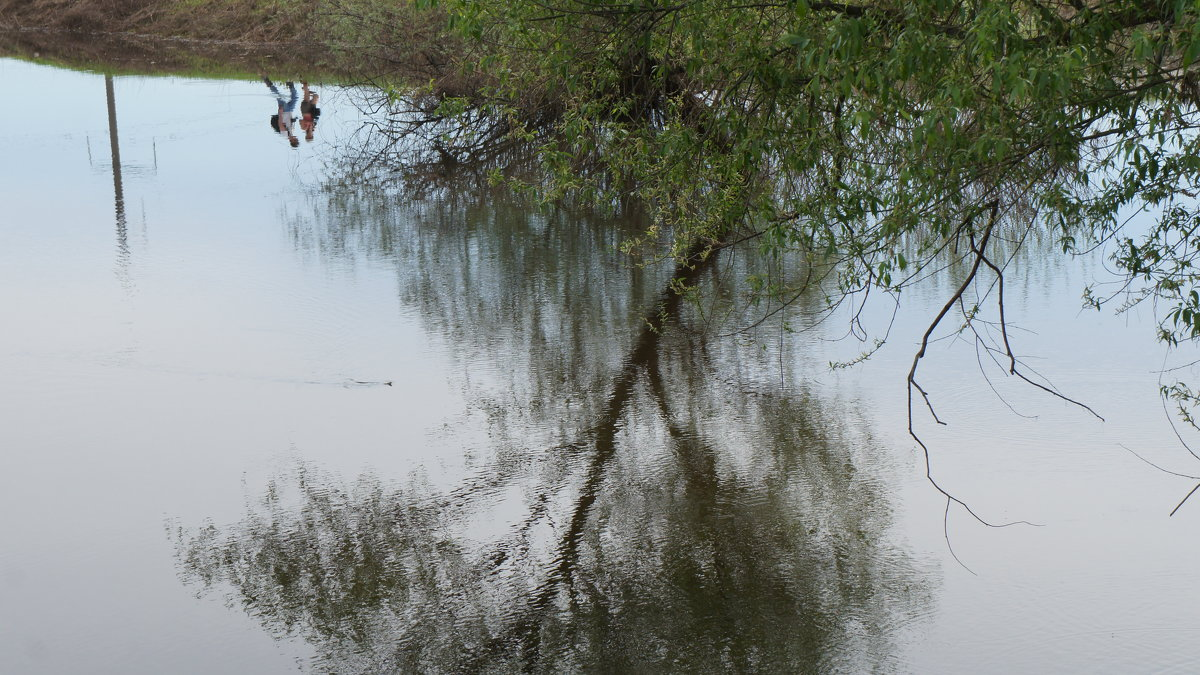 Прогулка по берегу Нерли - demyanikita