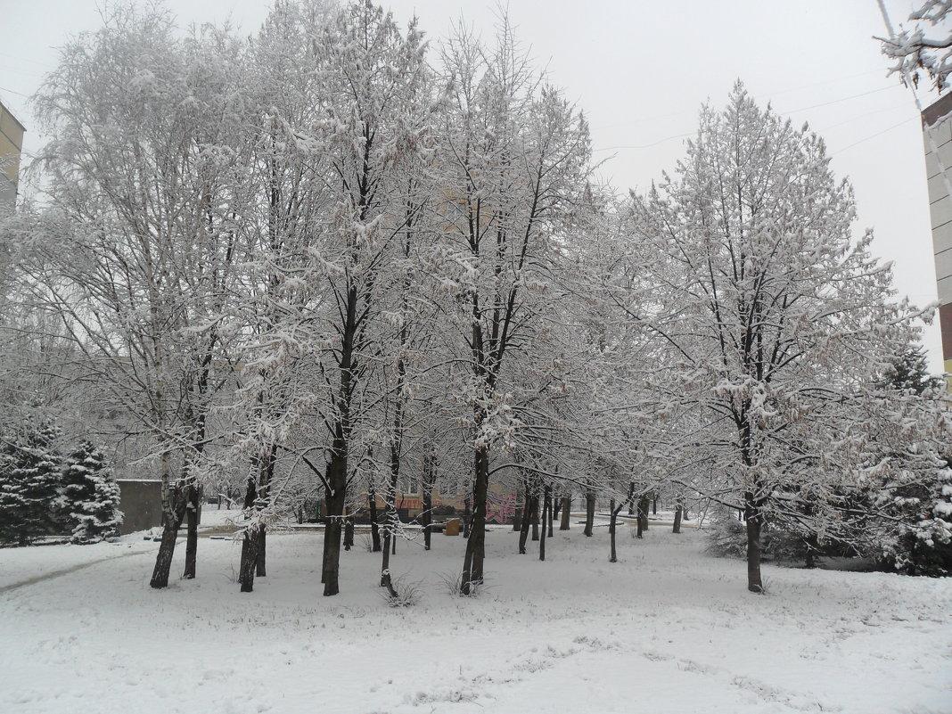 Зима - Максим Мартыненко