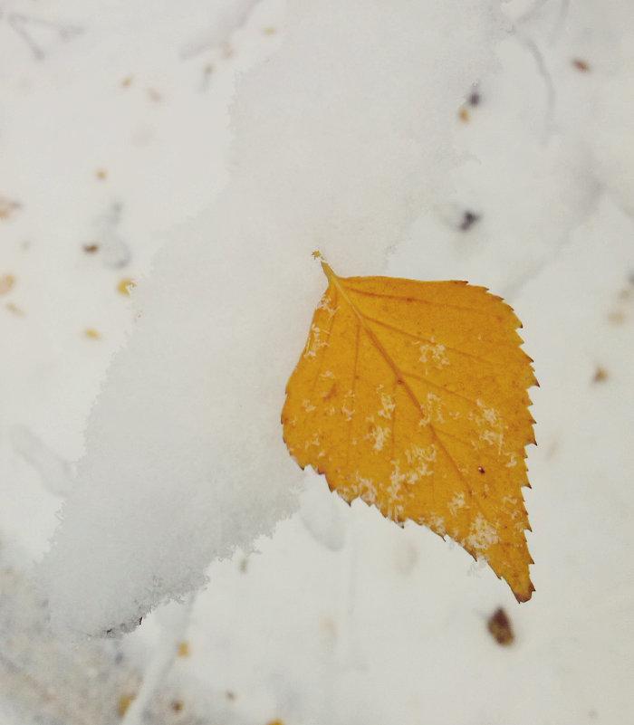 Зима осенью. - Кристина Кеннетт