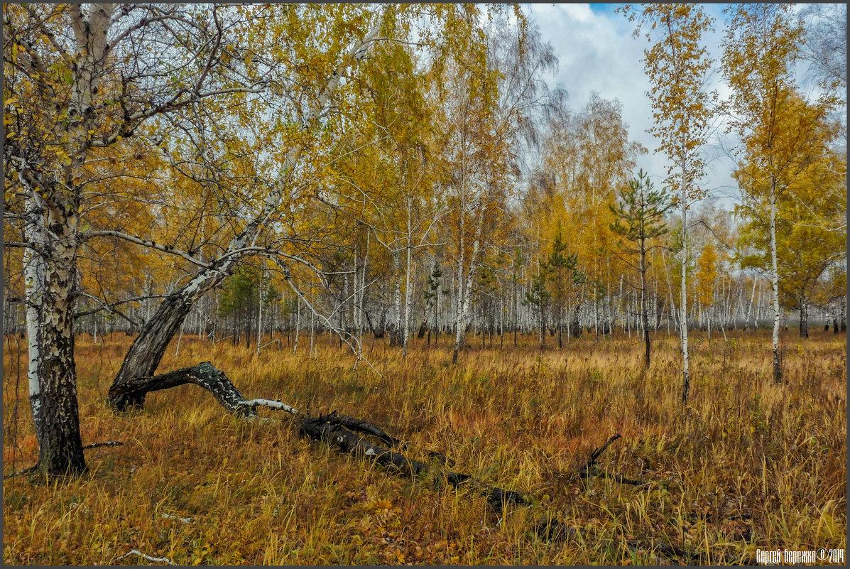 Немного про октябрь.... - Сергей Бережко