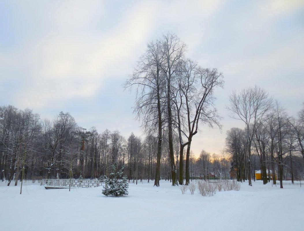 зима - Елена