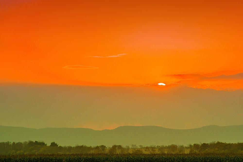 Оранжевое небо - Евгения