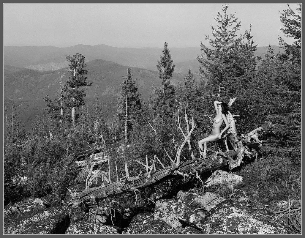 Наедине с природой - Валерий Блинов