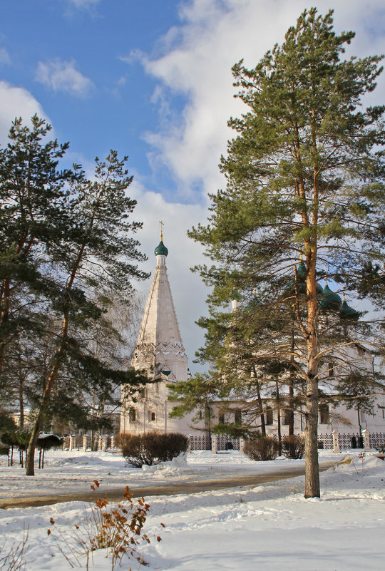 Колокольня церкви Ильи Пророка - Вячеслав Крутецкий