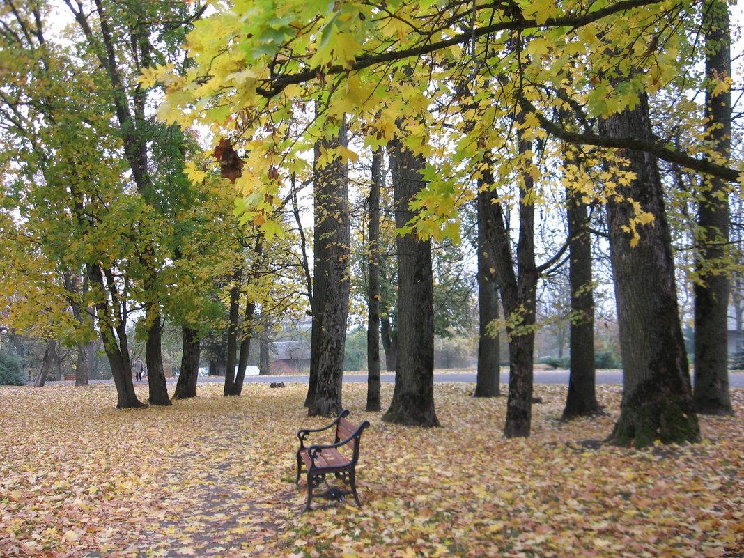 Ница,осень. - Геннадий