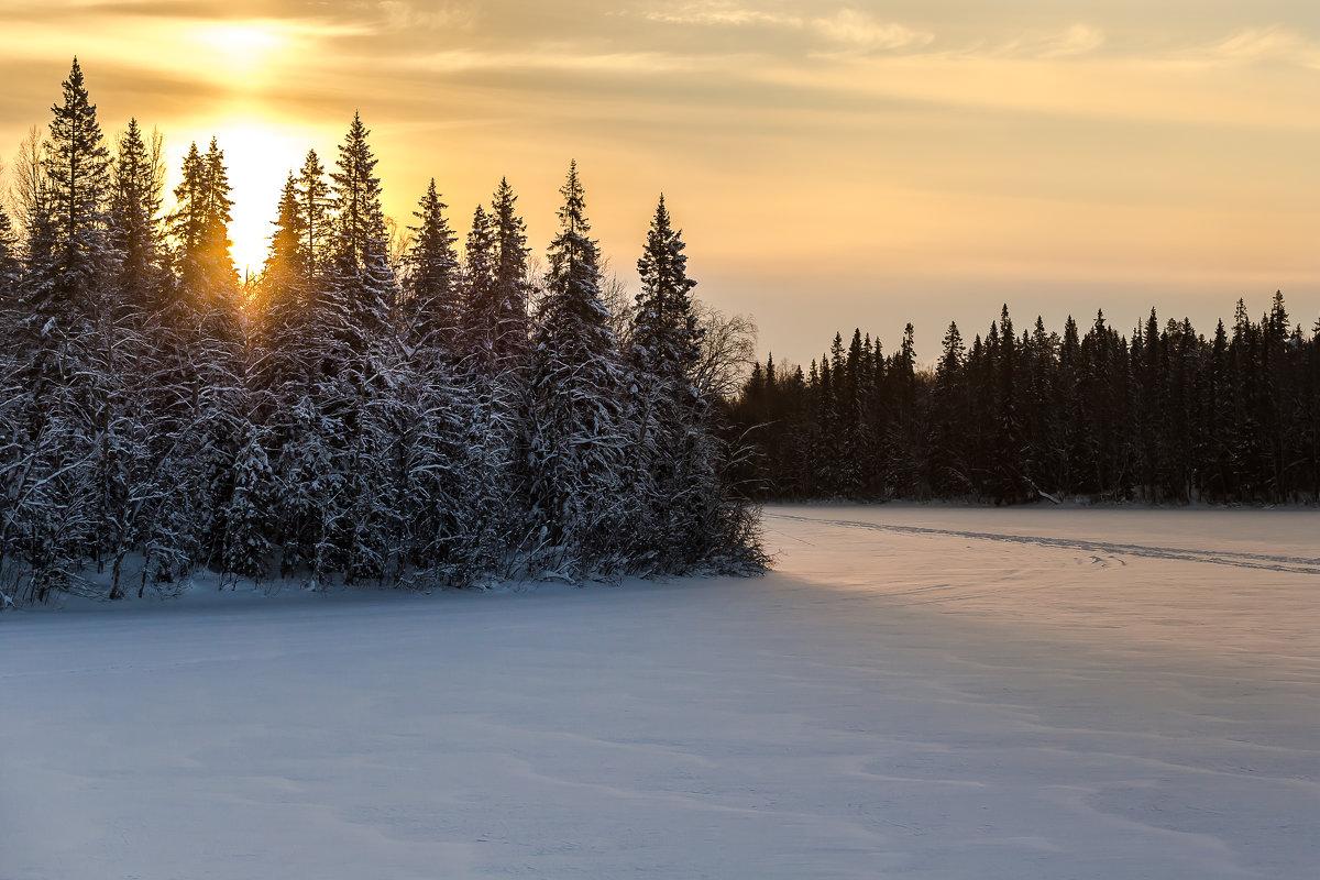 зимний пейзаж - Александр Шипов