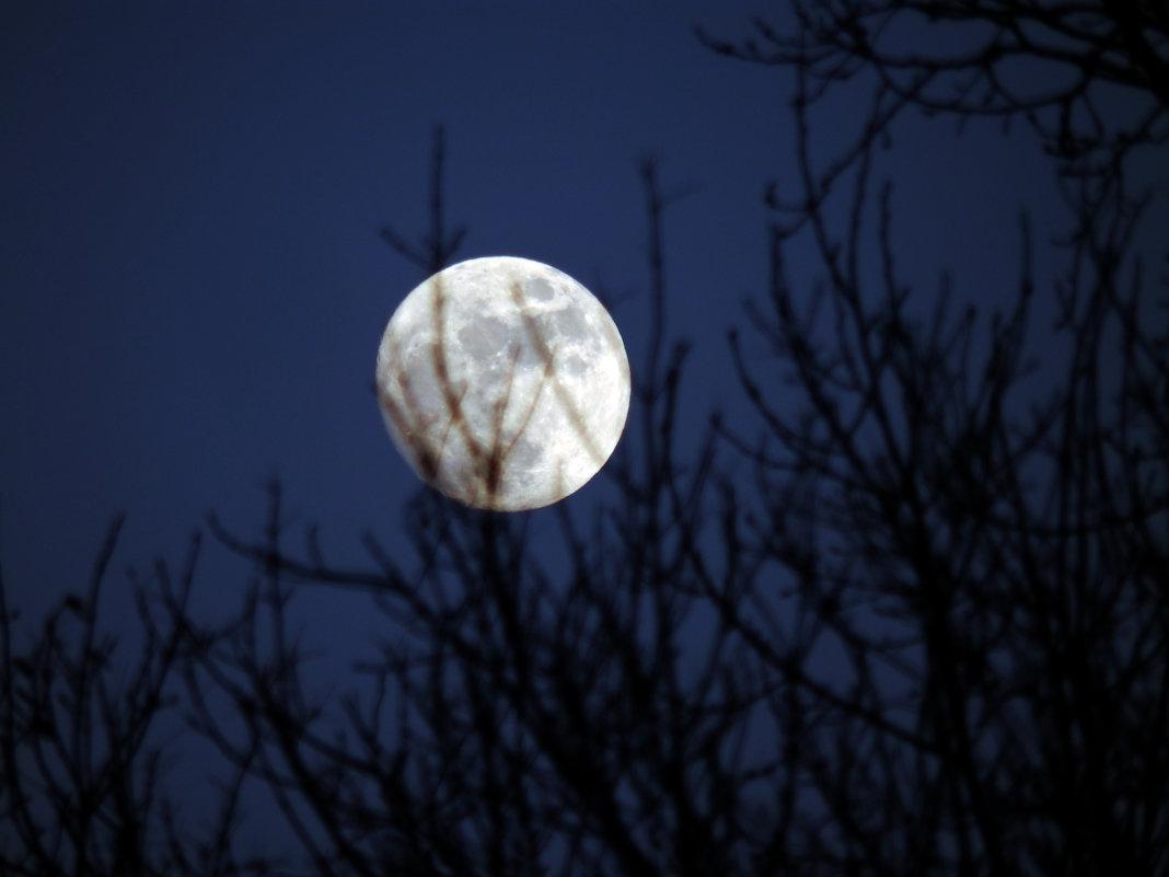 ...и снова про Луну... - Сергей Щелкунов