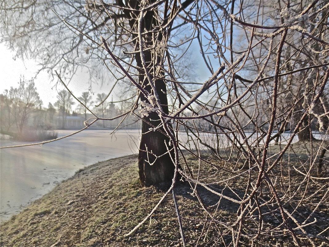 зимний старт - Елена