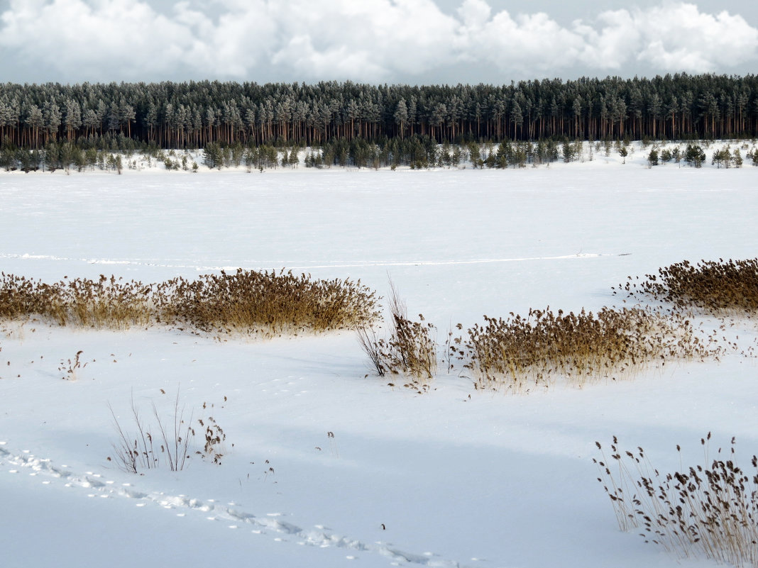 Озеро - Наталья Варламова