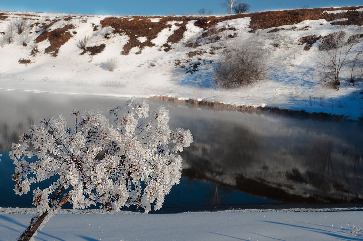 Цветы от Снежной Королевы...)) - Владимир Хиль