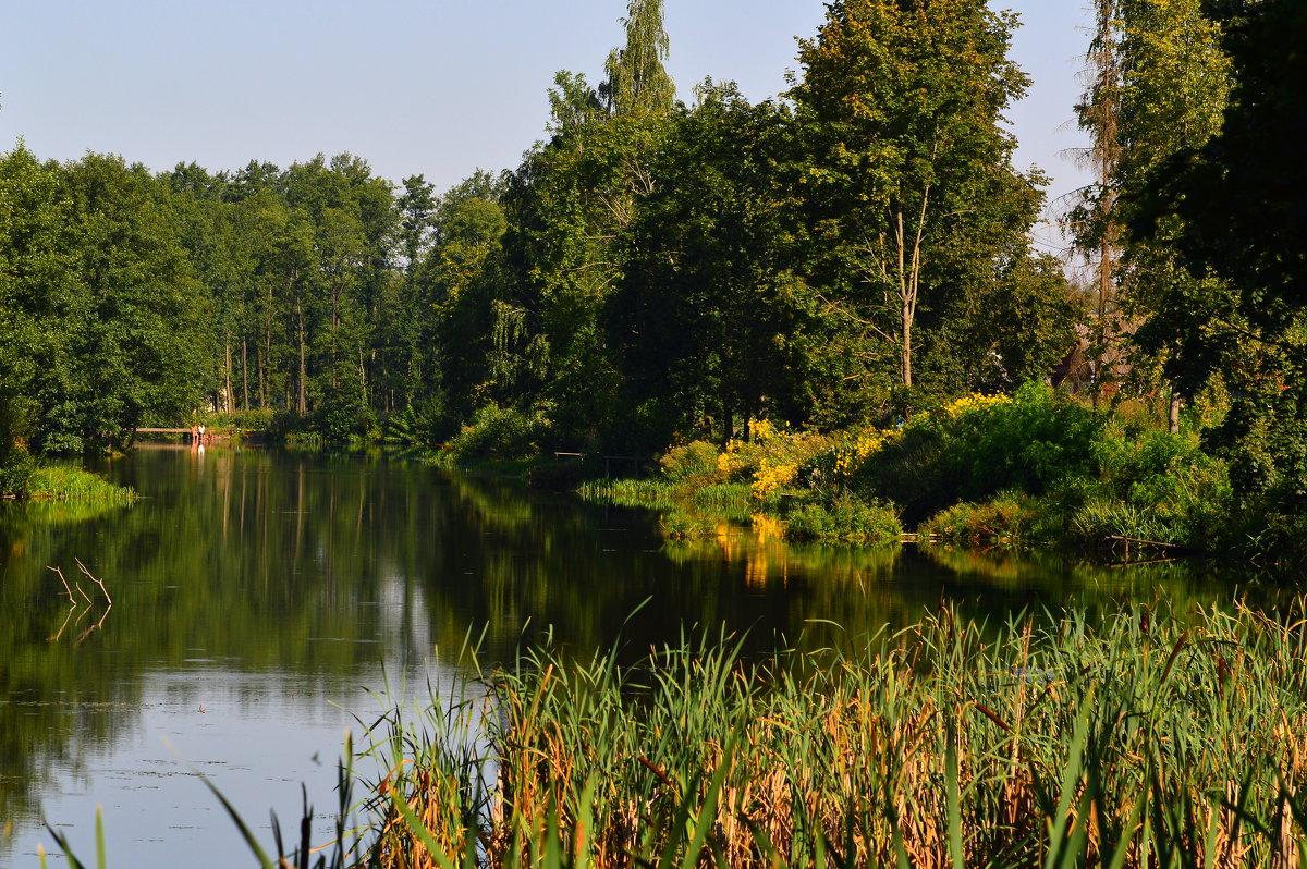 пейзаж - Алексей Жуков