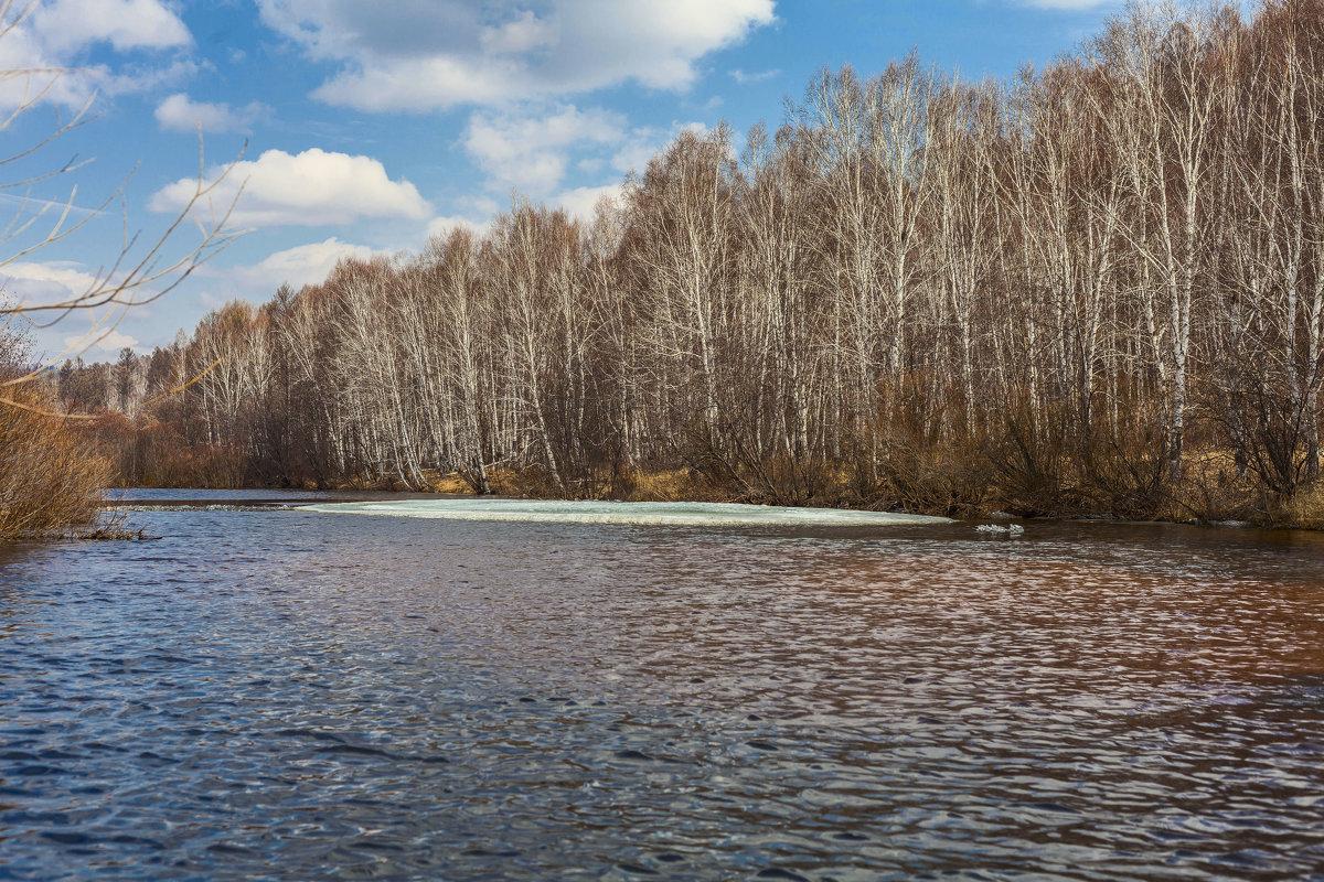 весенний клев на реке