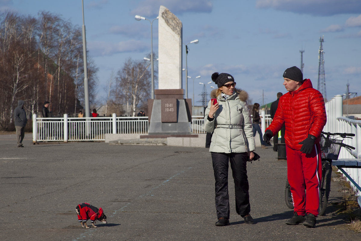 Трио где доминирует красный - Марина Тверитнева