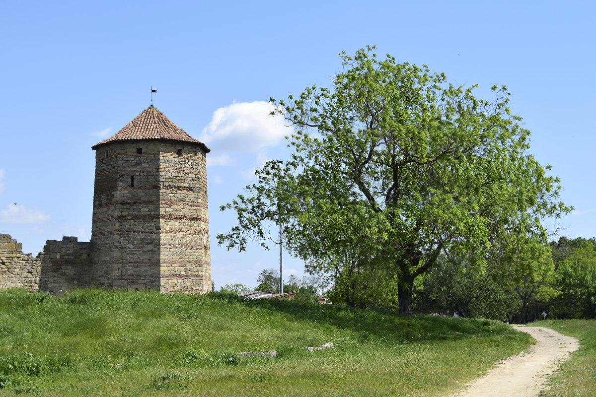 2995079 В Аккерманской крепости расконсервировали «Девичью башню»