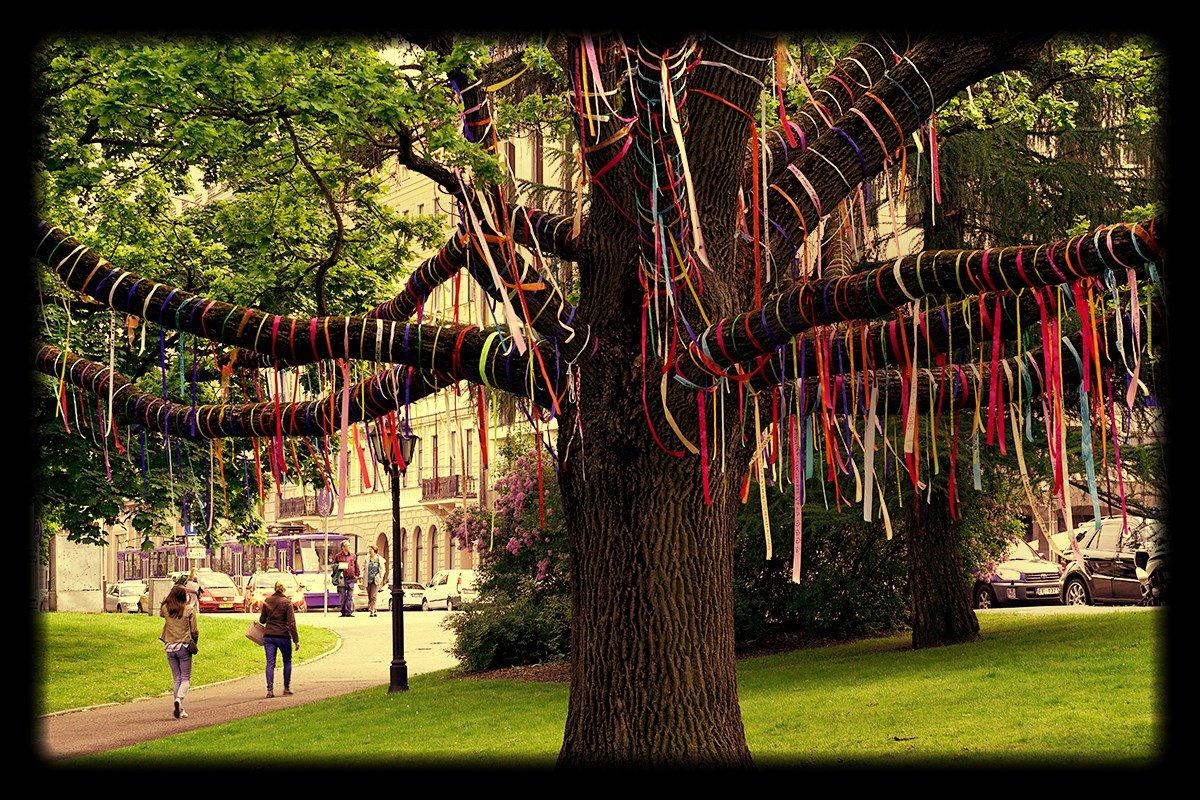 стоит зачем привязывают ленточки к деревьям утилизационного сбора