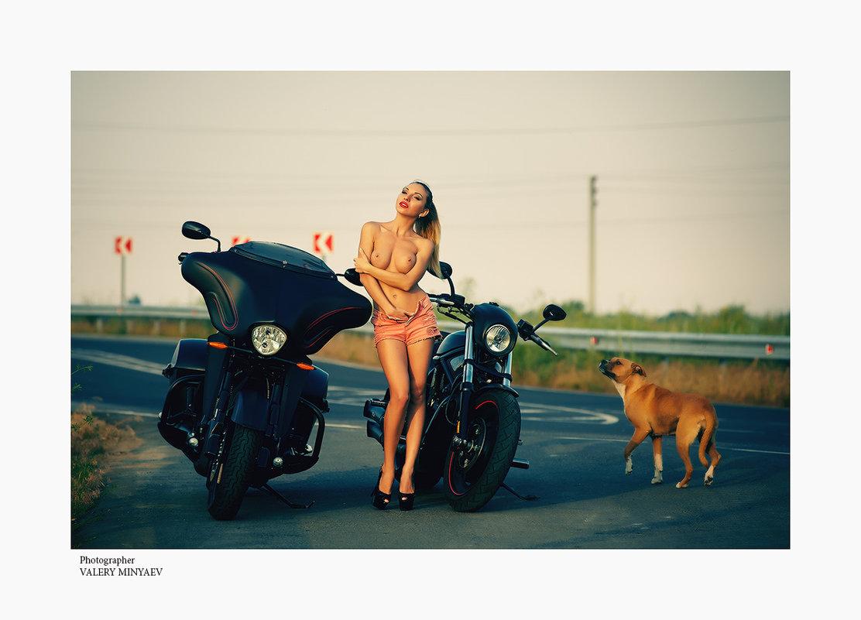Тёплый вечер - Валерий Миняев