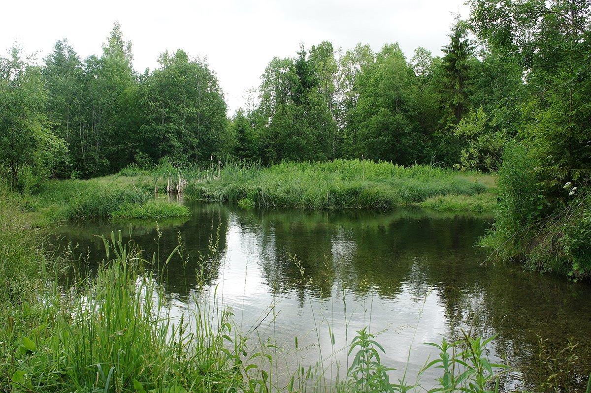 Запруда на реке Парица - Елена Павлова (Смолова)