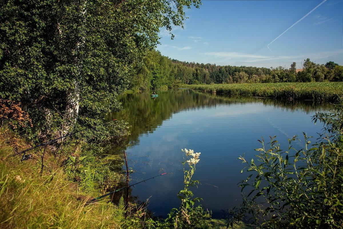 На озере - Николай Алехин