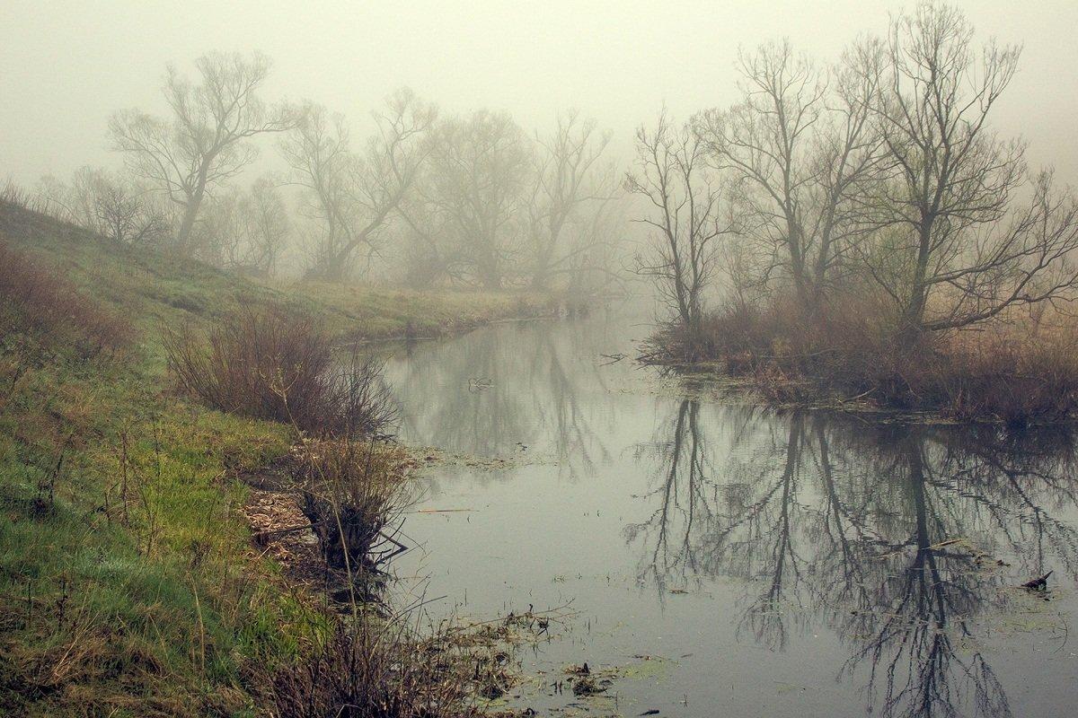 Утром на речке - Николай Алехин