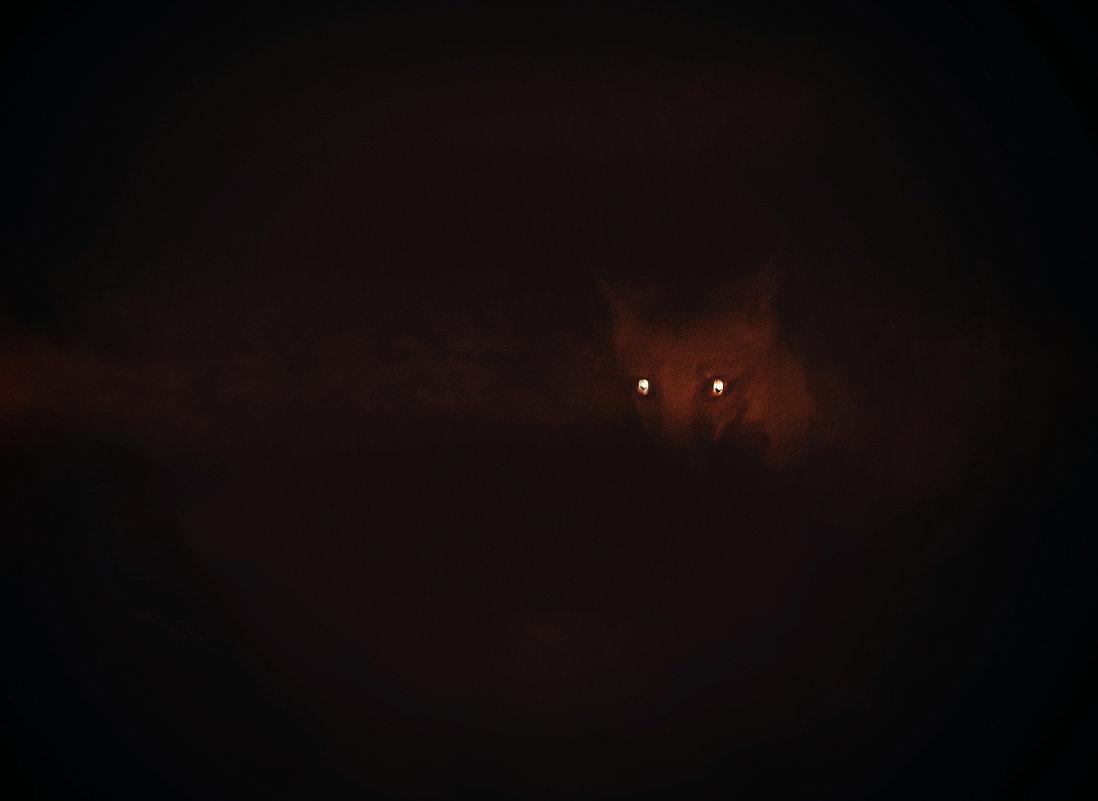 лисичка затаилась.)))) - Ирэна Мазакина