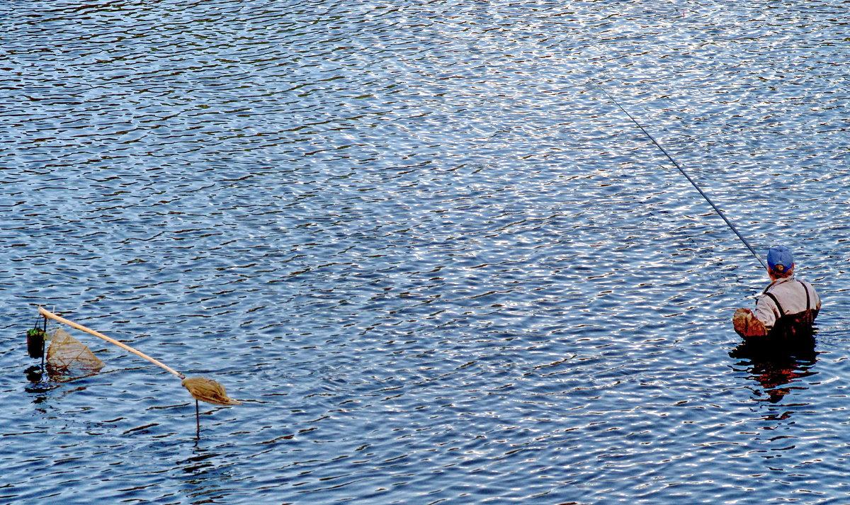 рыбалка в гомеле и в области